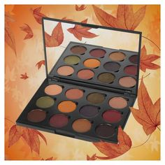 fall eyeshadow pallet(yep going into the fall colors lol)☺