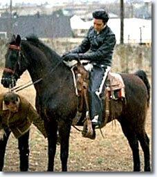 elvis-horse.jpg (227×256)