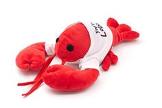 """Funny reminder of Phoebe's story 8"""" x 4"""" plush available in a white """"You're my lobster"""" shirt"""