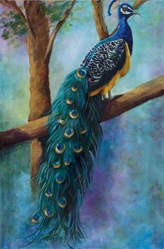 """Peacock Painting """"Seeking the Heights"""" (Birds on Limb), Original Art, Peacock Wallpaper, Peacock Wall Art, Peacock Painting, Peacock Decor, Peacock Colors, Peacock Images, Peacock Pictures, Pfau Tattoo, Art Themes"""