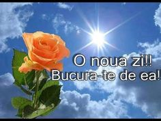 Clara Alonso, Good Morning Greetings, Blessed, Lily, Youtube, Medical, Floral, Art, Romantic Pictures