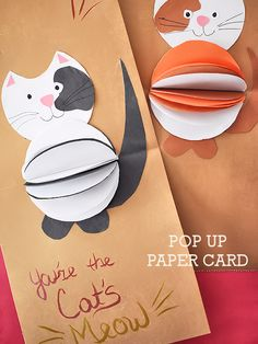 Our Cat Meows for @MeowMix at Meijer & a DIY 3D Cat's Meow Pop Up Paper Card Valentine's Day Craft #MeowMix (ad)