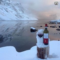 I G  O F  T H E  D A Y  P H O T O | @sisber0810 L O C A T I O N | Norvegia / Norway (To taste the effect of our Dolcetto d'Alba  in Norwegian ice) F R O M | @ig_cuneo_ A D M I N | @berenguez M O D E R A T O R | @sarasbre S E L E C T E D | our team F E A T U R E D  T A G | #ig_cuneo_ #ig_cuneo #langhe M A I L | igworldclub@gmail.com S O C I A L | Facebook  Twitter  L O C A L  S O C I A L | http://ift.tt/1PoRtlj  http://ift.tt/1E9QCiB  http://ift.tt/1Qng2g6  M E M B E R S…