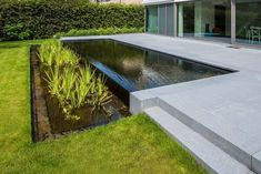 English Garden Design, Ibiza, Garden Landscaping, Landscape Design, Pond, Swimming Pools, New Homes, Backyard, Exterior