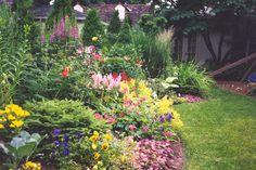 love how full this garden looks