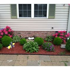 Front Of The House Landscaping Minus Hastas