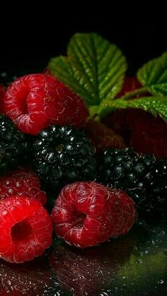 Berry important to eat your berries! Fruit And Veg, Fruits And Vegetables, Fresh Fruit, Colorful Fruit, Vegetables Photography, Fruit Photography, Life Photography, Photo Fruit, Beautiful Fruits
