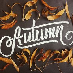 The only thing that comes to my mind is pumpkin spice latte  Yes I've problems with coffee  Amazing  work by @memovigil #betype #typography #lettering