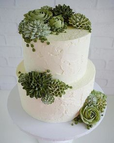 Stucco + Succulents in Butter . Spanish Stucco + S ., Spanish Stucco + Succulents in Butter . Spanish Stucco + S ., Spanish Stucco + Succulents in Butter . Spanish Stucco + S . Pretty Cakes, Cute Cakes, Beautiful Cakes, Amazing Cakes, Succulent Wedding Cakes, Succulent Cakes, Cactus Cake, Cake Piping, Savoury Cake