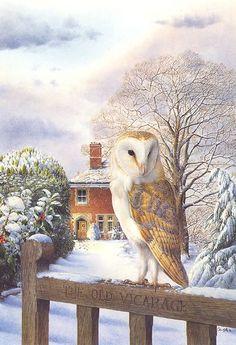 Winter Vigil, by Wildlife Artist Colin Woolf Wildlife Paintings, Wildlife Art, Animal Paintings, Owl Art, Bird Art, Felt Owls, Peacock Art, Beautiful Owl, Winter Art
