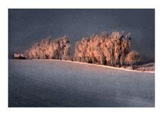 Tomek Sikora, Z cyklu Cztery pory roku, wydruk laserowy, 27 x 42 cm