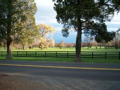 Every time I see black fences like this, it makes me think of Fauquier County.