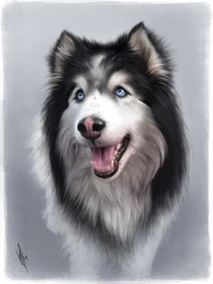Misha by WarrenLouw - animal - portrait - illustration - black and White - dog with blue eyes - husky