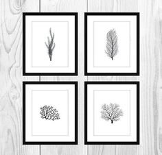 """This listing is for an instant download of my White and Black Coral Printable Bathroom Artwork (Set of 4, 5x7"""")."""