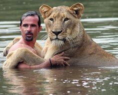 Kevin Richardson swims with Meg the lion in the Crocodile River just south of the Magaliesburg mountains, near Johannesburg, South Africa