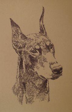 DOBERMAN PINSCHER Artist Kline draws dog art using by drawDOGS