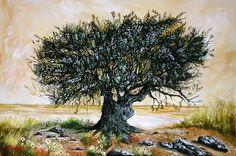#Olivetree #tree #oil #painting www.eshop-art.gr Weird Trees, Beautiful Forest, Tree Forest, Fruit Art, Olive Tree, Fantastic Art, Art Oil, Landscape, Olive Oil