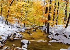 """Realistic landscape painting at Art Leaders Gallery: """"October Snowfall"""" by Alexander Volkov. Discover affordable fine art, sculptures, hand blown glass, art gifts, and custom framing. artleaders.com 