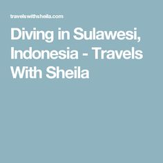 Diving in Sulawesi, Indonesia - Travels With Sheila