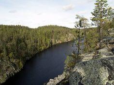 The planned Hossa National Park opened in 2017 Suomussalmi Hossa and Moilanen Hazards and Kuusamo Terrible-Ölkky areas.Photo: Mari Limnell/Metsähallitus