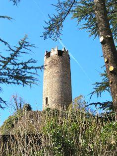 Torre Druso