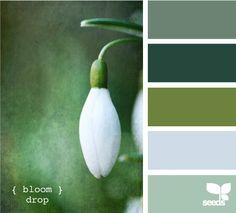 Groen in je interieur | Maison Belle