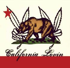 California Lovin California Love, Moose Art, Animals, Animales, Animaux, Animal, Animais