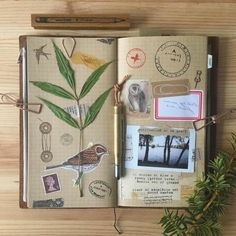 Scrapbook page ideas, light brown squared paper in a journal, green leaves, photos want to make your own travel diary? inspirational ideas in 60 photos Packing Tips For Travel, Travel Essentials, Travel Scrapbook, Scrapbook Pages, Scrapbooking, Torre Eiffel Paris, Midori, Wie Macht Man, Journal Design