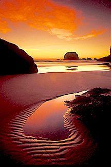 #Oregon Coast