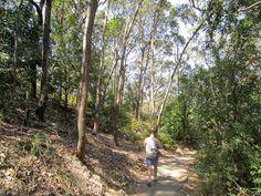 Aussie Overlanders - Burleigh Heads National Park, Australia