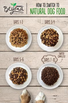 Experts advise on switching your dog to a new, natural dog food gradually, over the course of about 7-10 days. A sudden change in diet can cause stomach upset, so take it slow for an easy transition.