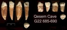 Was Israel the birthplace of modern humans? Tel Aviv University archaeologists have uncovered evidence that Homo sapiens roamed the land now called Israel as early as 400,000 years ago -- the earliest evidence for the existence of modern humans anywhere in the world.