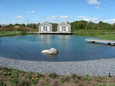 Natural Swimming Pool - traditional - landscape - boston - R. Marzilli & Company Landscape Contractor Oh how I want this Swimming Pool Pictures, Small Swimming Pools, Swimming Pool Designs, Natural Swimming Ponds, Natural Pond, Living Pool, Pool Shapes, Traditional Landscape, Biologique