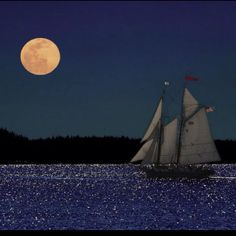 Sailing during a full moon is awesome!!
