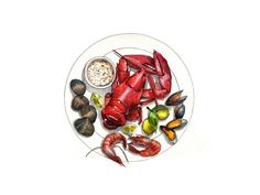 illustration_watercolor_food_omar_0.jpg (1000×750)