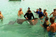 Stingray Ballet & Snorkel Safari in Bora Bora. Explore the exquisite beauty and undersea denizens of Bora Bora's lagoon during this stingray ballet and snorkeling safari aboard a covered snorkeling boat.  www.pgcruises.com