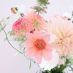 Special bouquet including dahias Totally Tangerine, Cafe au Lait and Burlesca Dahlia, Bouquet, Bloom, Flowers, Plants, Bouquet Of Flowers, Bouquets, Plant, Royal Icing Flowers