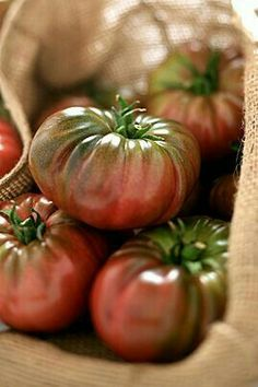 tomatoes / tomates - My CMS Fruit And Veg, Fruits And Vegetables, Fresh Fruit, Vegetables Photography, Fruit Photography, Beautiful Fruits, Tomato Garden, Heirloom Tomatoes, Colorful Garden