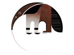 anteater  illustration design