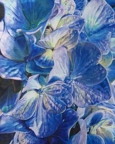 Moms Flowers - COLORED PENCIL by beautyinmetal AKA 'M' from S Photography, via Flickr