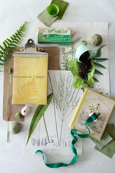 botanicals - ali harper photography