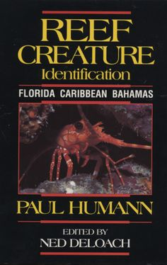 """Reef Creature Identification: Florida, Caribbean, Bahamas by Paul Humann. """"More than 30 marine life scientists from 8 nations collaborated with the author to compile the most comprehansive and accurate visual identification guide of reef invertebrates ever publish."""""""