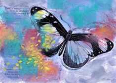 A late Summer butterfly floats over a nectar filled meadow.  Created with watercolor, collage, and a vintage illustration of a butterfly. Find this lovely and affordable art print at my Image Kind gallery. #butterfly #butterflylovers #violetcolor Affordable Art, Late Summer, My Images, Studios, Collage, Butterfly, This Or That Questions, Watercolor, Art Prints