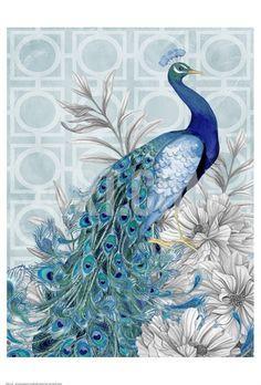 Monochrome Peacocks Blue Art Print by Nicole Tamarin at Art.com