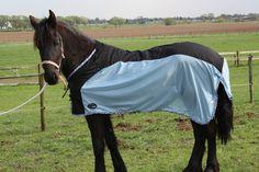 Speciaal voor Fries paard..... 36,95