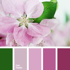 """""""dusty"""" pink, apple tree flowers, burgundy, color of grass, colors of spring 2017, green and pink, lilac, purple, saturated green, shades of dusty pink, shades of pink, shades of purple."""