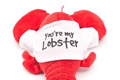 You're my lobster stuffed animal from Friends | Cool TV Props