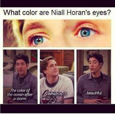 <3 Niall's eyes <3 One Direction Humor, One Direction Pictures, I Love One Direction, James Horan, Liam James, Style Zayn Malik, Bae, Irish Boys, Himym