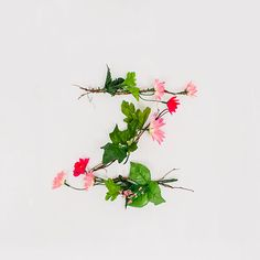 Anne Lee: Floral Typography via #designworklife - thanks to @Meenal Patel