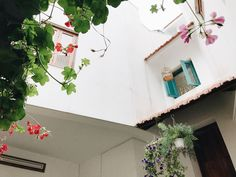 The Teahouse - Balcony Room - Houses for Rent in Hanoi, Hà Nội, Vietnam Private Room, Hanoi, Rental Apartments, Renting A House, Perfect Place, Balcony, Vietnam, Houses, Holiday